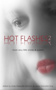 Hot Flashes 2 cover